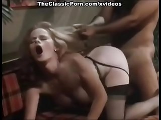 CLASSIC VINTAGE HAIR PULL PULLING DOGGY STYLE SHEER STOCKINGS PANTYHOSE NYLON DOGGY STYLE SEX